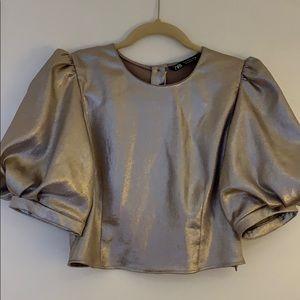 Zara Metallic Crop Top